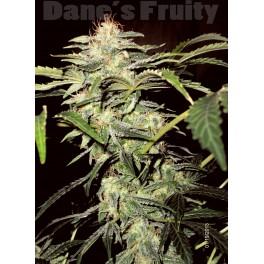 Dane's Fruity (Auto) - 10 +3 regulære frø